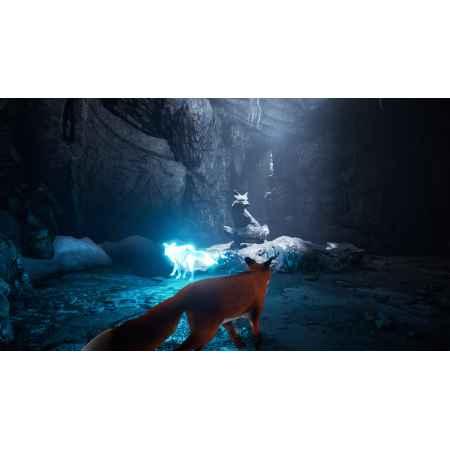 Spirit of the North - PS4 [Versione EU Multilingue]